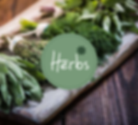 herbs-boxes.png