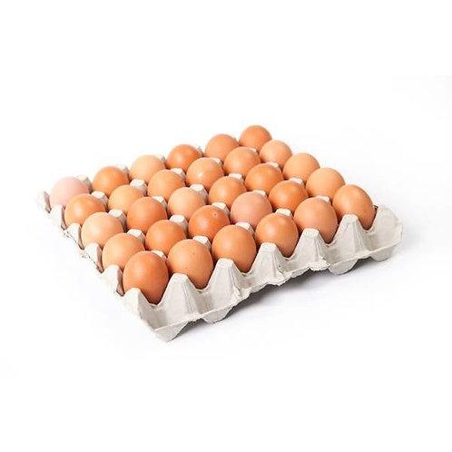 Eggs x30