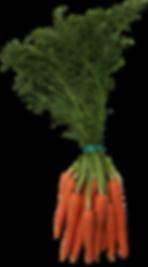 carrots-item.png