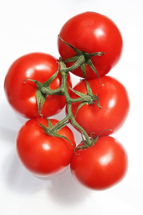 Vine Tomatoes / £3.20 per kilo