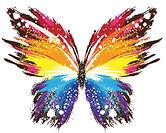 Colour Grafitti Butterfly.jpg