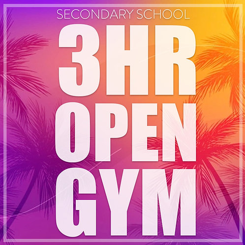 3hr Open Gym (Secondary School Age)