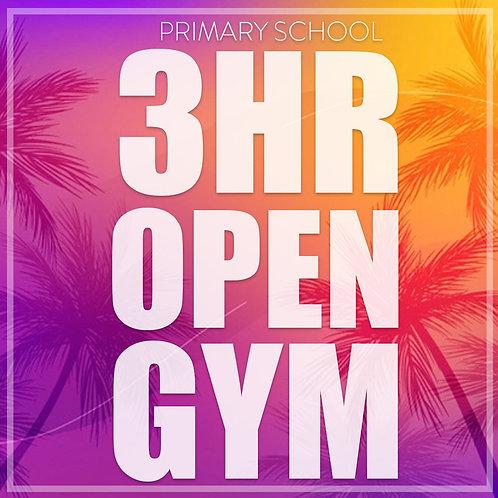 3hr Open Gym (Primary School Age)