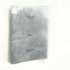 Cédric Torne - fanzine (19€)