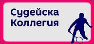 Судейская_кллегия.png