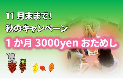 1か月3000円おためし.png
