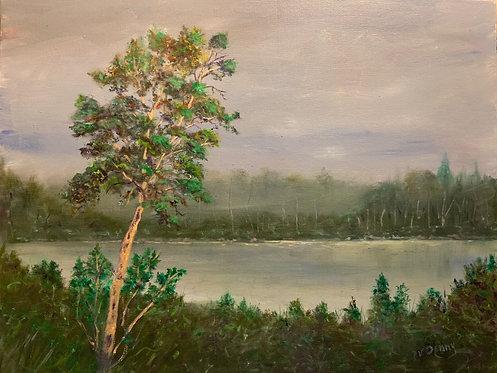 Morning Mist - Bonnie Denny