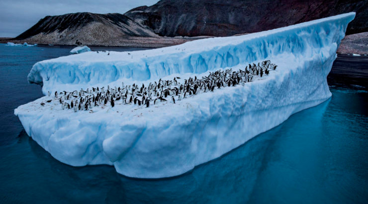 Antarctica: How this distant ice-covered land could become one of our greatest enemies?
