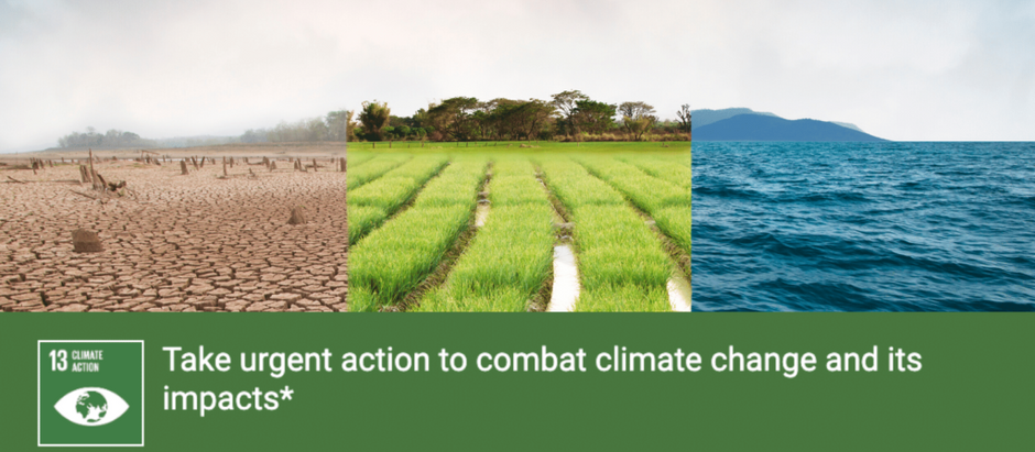 India's contribution towards  achieving U.N. Sustainable Development Goals of climate action