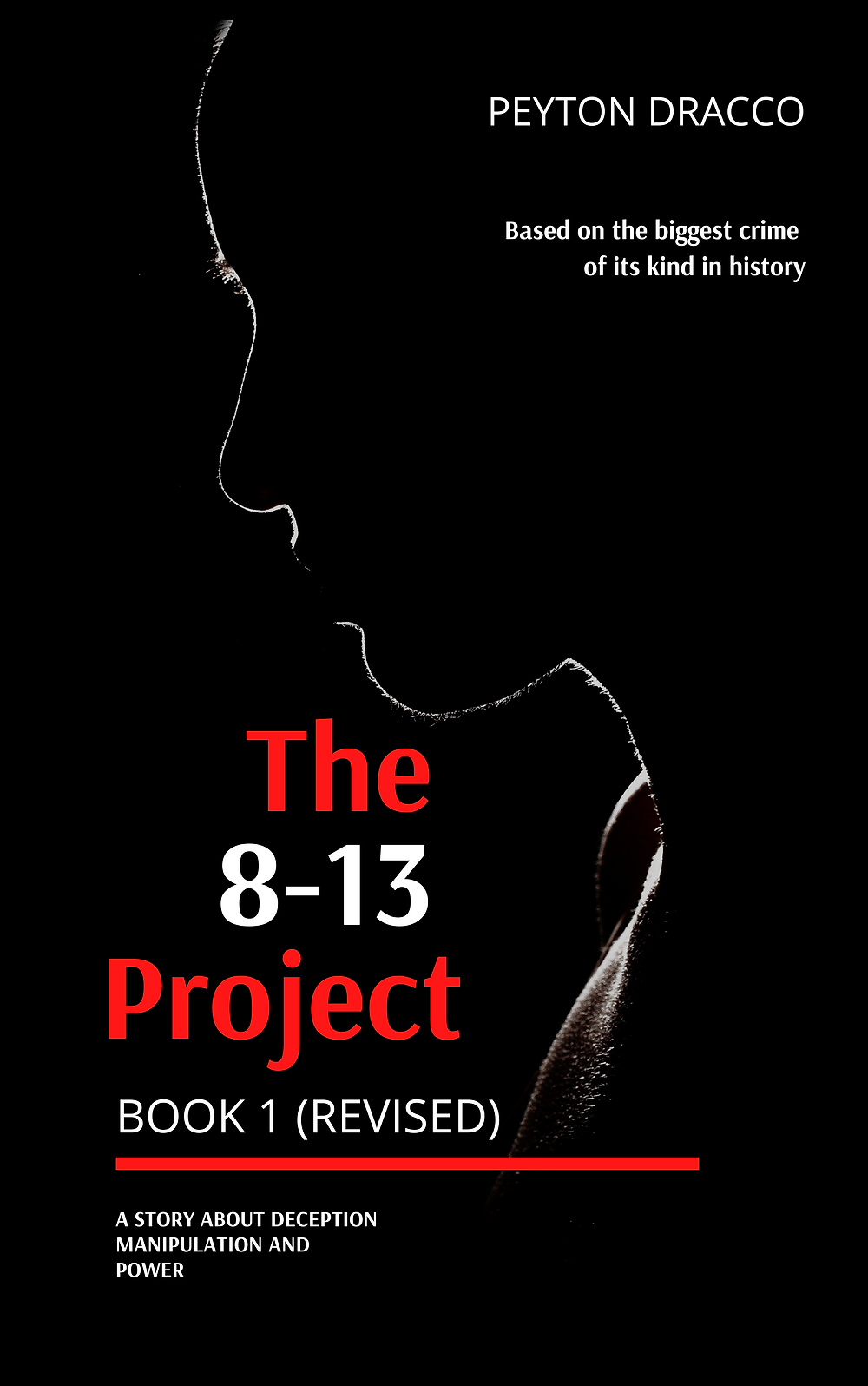 Cover of the 8-13 Project Book 1