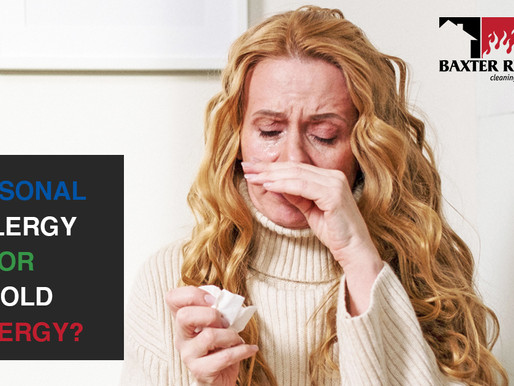 Seasonal Allergy or Mold Allergy, What's The Difference?