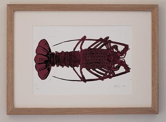 Lobster (unframed print)