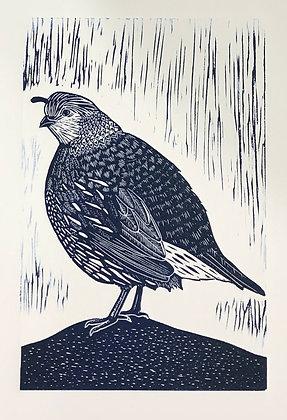 Quail (hen) (unframed print)