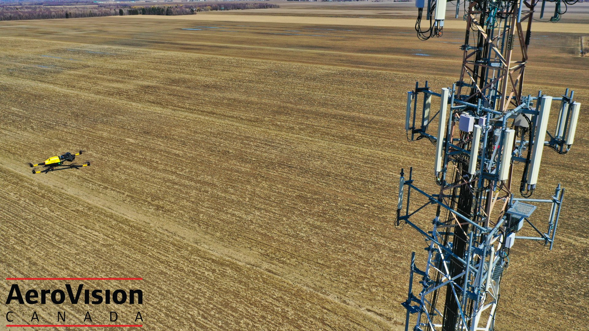 tower inspection.jpg
