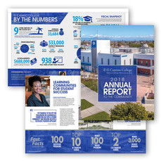 Annual Report & Report to Congressional Districts