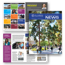 Newsletter / Magazine