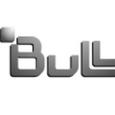 bull_edited.png