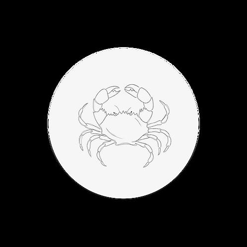 Muurcirkel krab