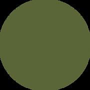 ss co colour 3.png