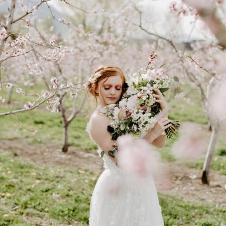 Orchard Bridals