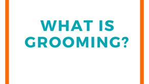 Understanding Grooming