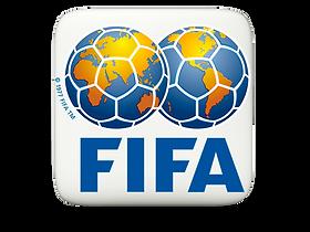 FIFA 3D.png