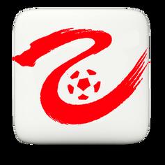 CFA League 2 3D.png