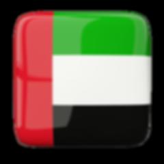 Escudos dos clubes de futebol dos Emirados Árabes Unidos.