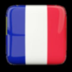 Escudos dos clubes de futebol da França