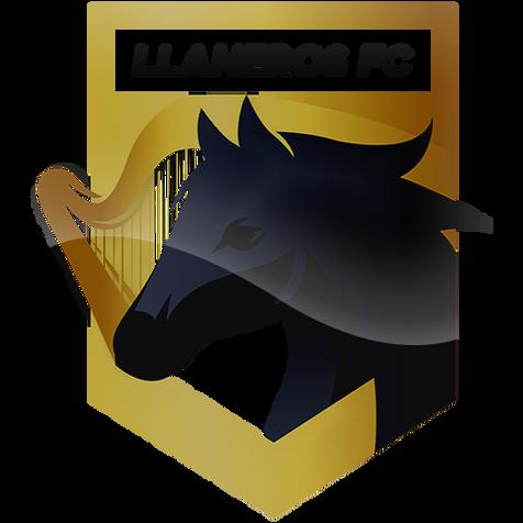 Llaneros FC-COL