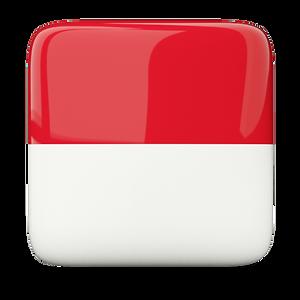 Escudos Indonésia