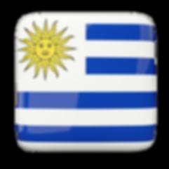 Escudos dos clubes de futebol do Uruguai