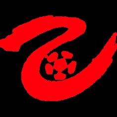 CFA League 2.png