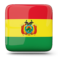 Escudos dos clubes de futebol da Bolívia