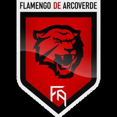 Flamengo de Arcoverde-PE