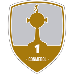 Patch Libertadores (1)