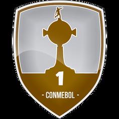 Patch Libertadores