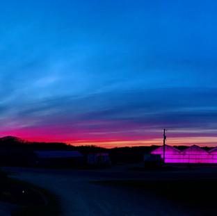 Night sky over greenhouse