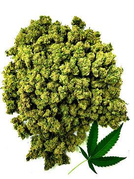 CBD Bud-Hemp Leaf