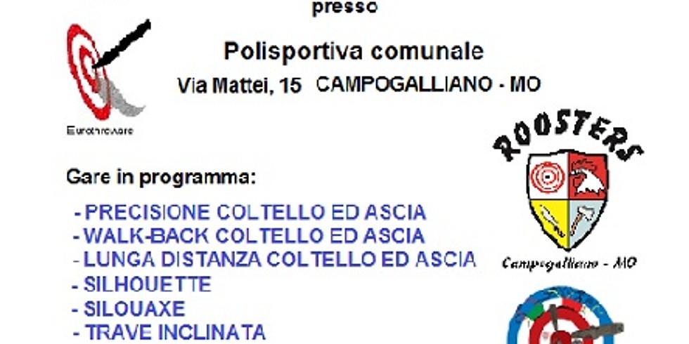 5° Trofeo Roosters Città di Campogalliano
