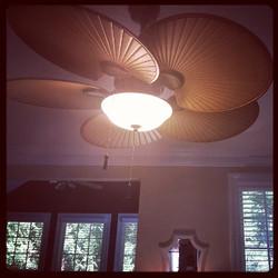 #HamptonBay #ceilingfan installed