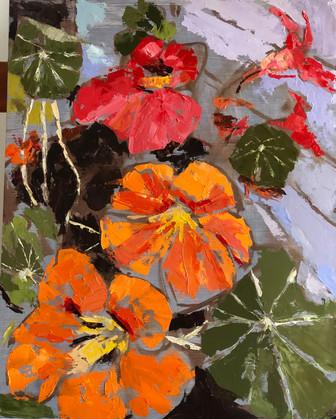 "Nasturtiums, 20"" x 16"", oil on canvas, $"