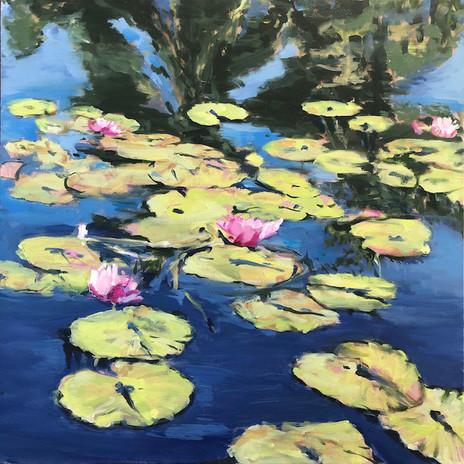 Waterlillies, 20 x 20,  oil on canvas, POR