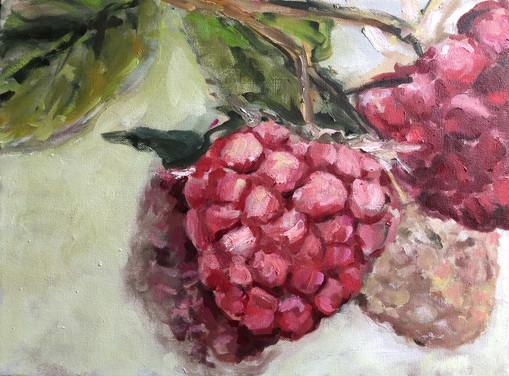 Raspberry Study 12 x 16, $295