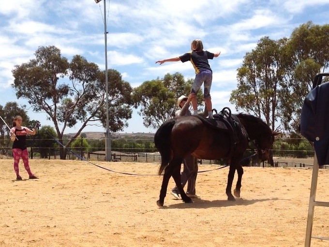 Equestrian Vaulting Confidence