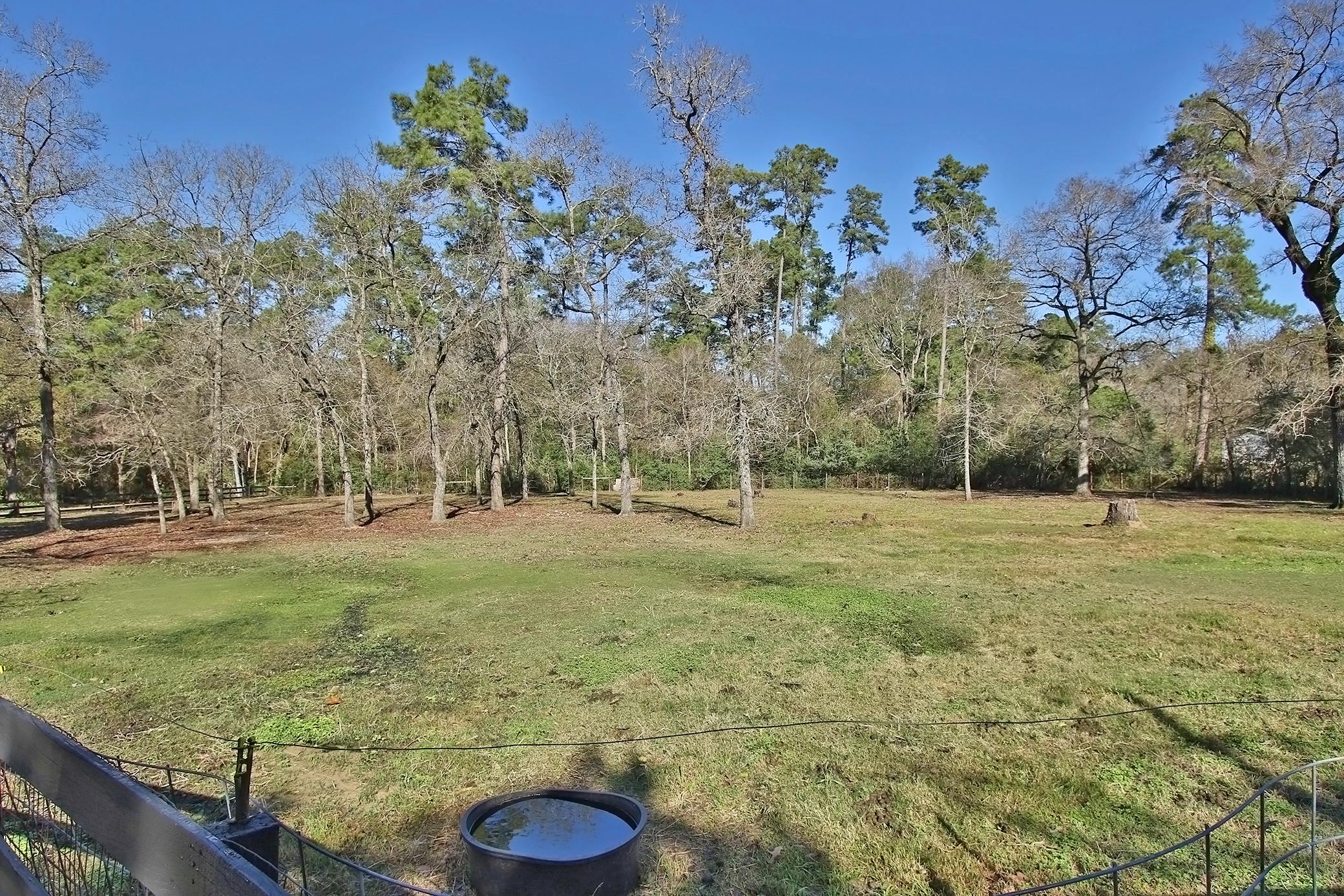dogwood-trail-23509-0047e