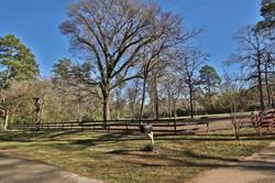 dogwood-trail-23509-0008e