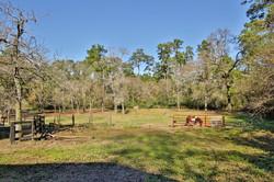dogwood-trail-23509-0048e