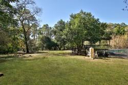 dogwood-trail-23509-0050e