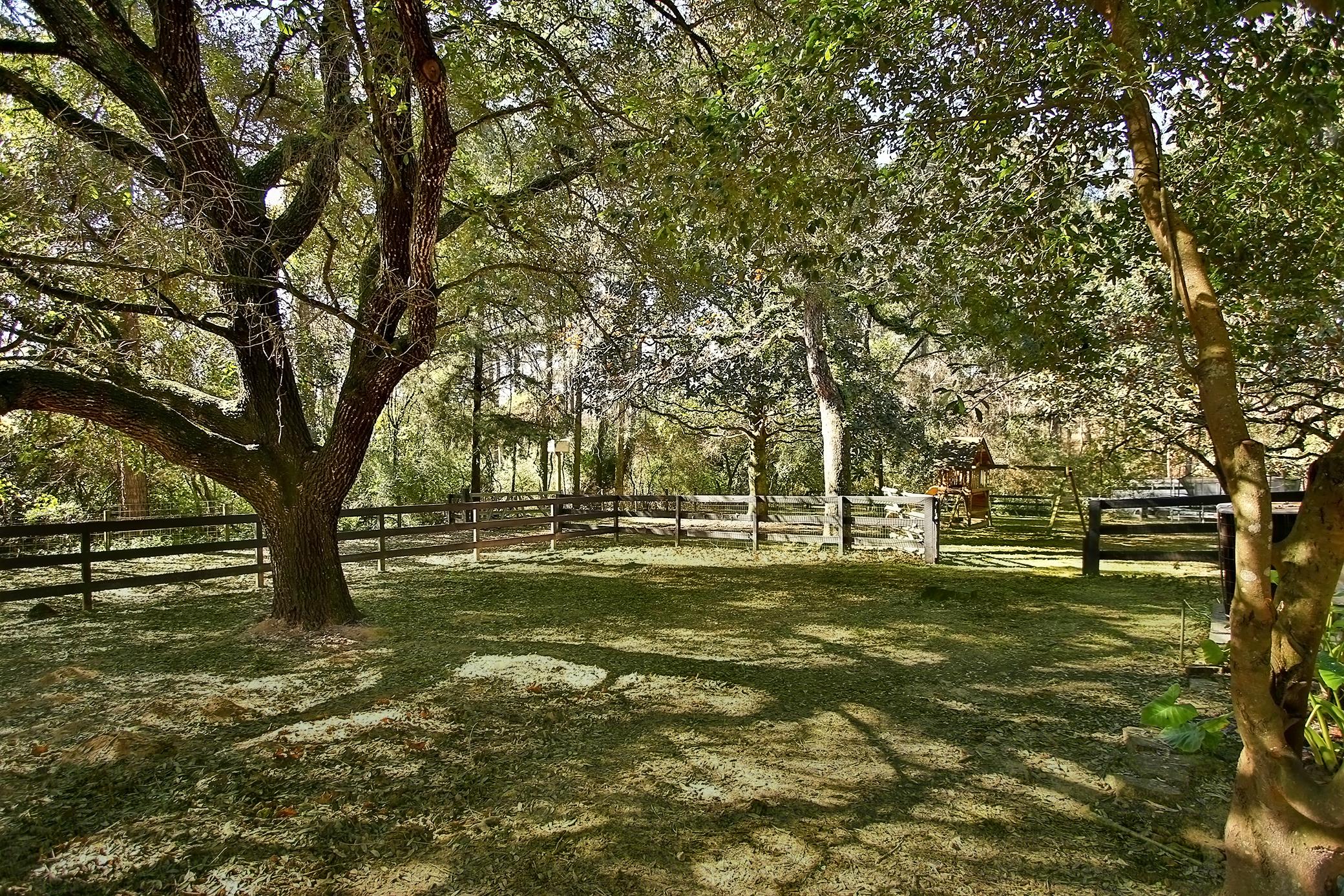 dogwood-trail-23509-0059e